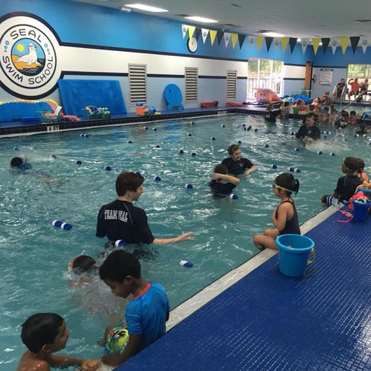 Seal Swim School